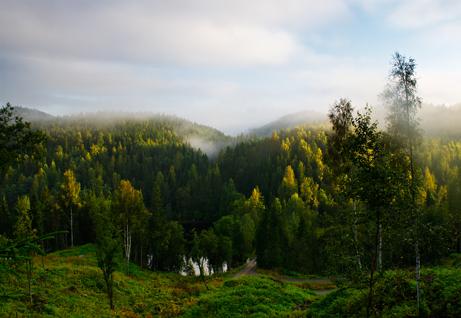 foto: Helge Lien